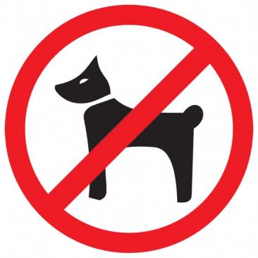 Въезд на территорию санатория с животными строго запрещен